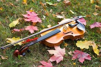 Violin in leaves